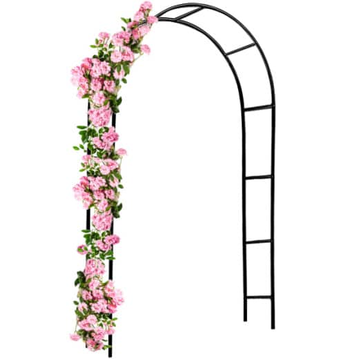 Arcade de rosiers 240x140x37cm