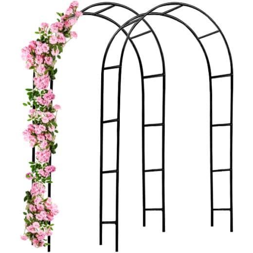 2x Arcade de rosier 240x140x37cm roses et plante grimpante